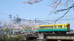20111120_railways.JPG