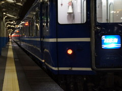 20111130_nihnkai2.JPG